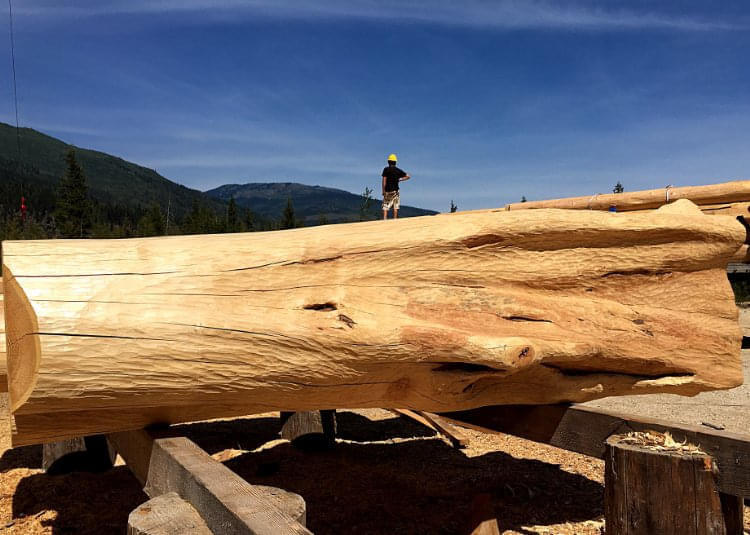 verschiedene baustile real canadian cedar homes st. Black Bedroom Furniture Sets. Home Design Ideas